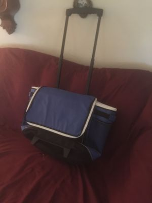 Folding insulated cooler bag will hold roughly 25 cans for Sale in Hayward, CA