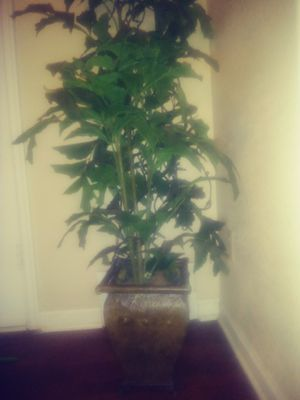 artificial plant with aluminum brown pot ...planta artificial con masetero color cafe de aluminio for Sale in Wichita, KS