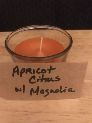 Apricot citrus with Magnolia for Sale in Tamaqua, PA