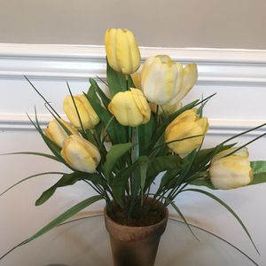 "Yellow Tulips in Clay Pot 17""T for Sale in Lexington, KY"