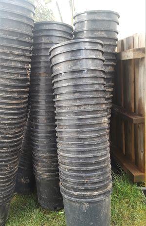 5 gallon, nursery plastic pots, $2.00 each for Sale in Auburn, WA
