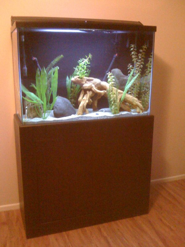 Aquarium With Stand & Accessories