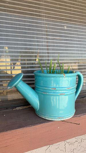 Cute aloe Vera watering can flower pot for Sale in Phoenix, AZ