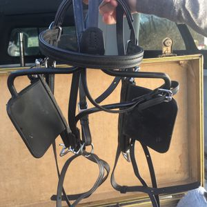 Pony Driving Harness for Sale in Lexington, KY