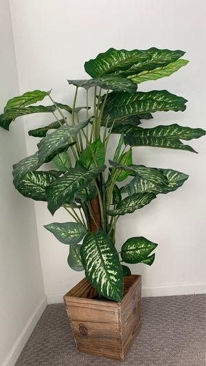 Fake plant for Sale in Wildomar, CA