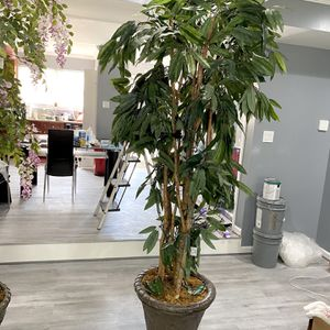 8 Feet Artificial Plant for Sale in Suitland-Silver Hill, MD