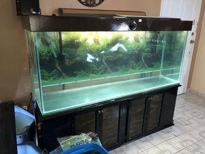 220 gallon fish tank (Needs New Seal) for Sale in Miami, FL