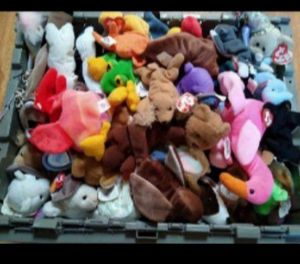 TY BEANIE BABIES COLLECTION for Sale in Modesto, CA