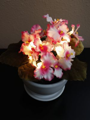 Lighted fake African violet plant for Sale in Puyallup, WA
