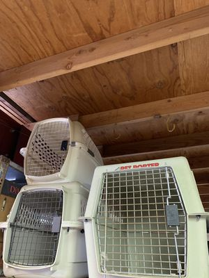 Fire evacuation? We have many carriers and cages for small animals, birds, chickens, pigeons, cages for cats, kittens, puppies and small to Medium si for Sale in Orange, CA