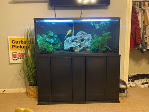 50 gallon fish tank for Sale in Houston, TX