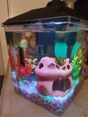 Fish tank aquarium pecera for Sale in Anaheim, CA
