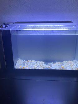 Fluval Spec V 5 gallon Aquarium for Sale in Beverly Hills,  CA