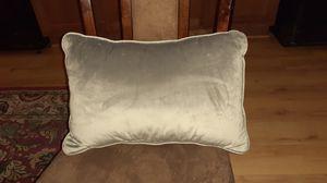 Gray Velvet Throw Pillow for Sale in Washington, DC