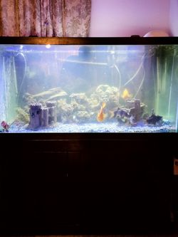 AQUEON 120 gal Fish Tank With Stand. for Sale in Vancouver,  WA