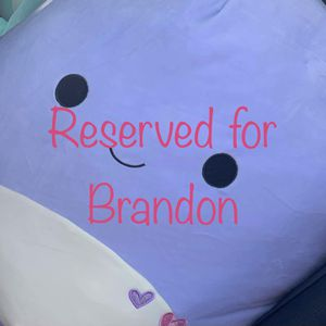 Plush Reserved For Brandon Only for Sale in Arlington, TX