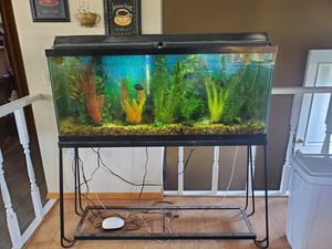 Free 55 gallon with stand, fish, filter, everything for Sale in Rapid City, SD