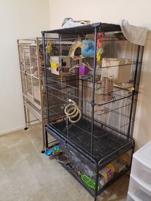 One bird cage with 15 love birds for Sale in St. Louis, MO