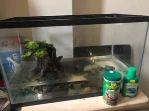 turtle(Shelly), turtle tank, accessories, food and water cleaner for Sale in Jonesboro, GA