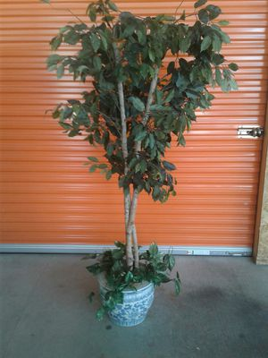 Home/Office Imitation Tree/Plant for Sale in Houston, TX