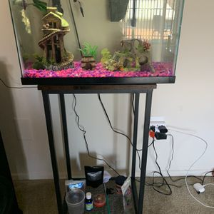 Fish Tank for Sale in Falls Church, VA