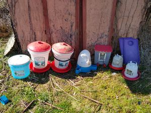 6 chicken drinkers and 2 duck drinkers for Sale in Lawrenceburg, KY