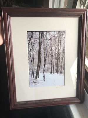 Framed picture for Sale in Silver Spring, MD