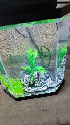 5 gallon fish tank for Sale in Pomona, CA