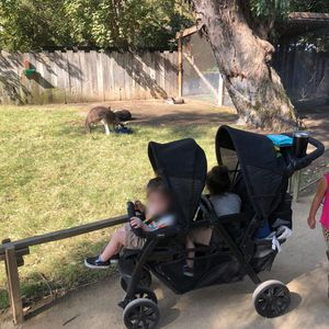 Chicco Double Stroller for Sale in Kingsburg, CA