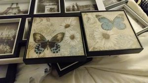 Butterfly pictures for Sale in Phoenix, AZ