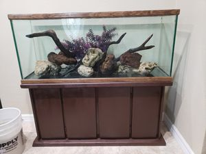 55 Gallon Aquarium Fish Tank - Full Setup for Sale in Houston, TX