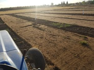 Tractor work or backhoe for Sale in Denair, CA