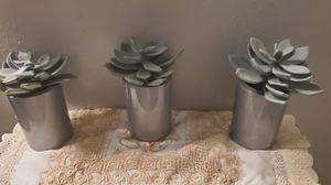 Decorating faux succulent for Sale in Dallas, TX