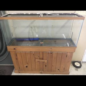 55 Gallon Fish Tank With Stand And Accessories for Sale in Annapolis, MD