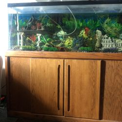 Fish Tank Comes With Everything You Need for Sale in Indianapolis,  IN