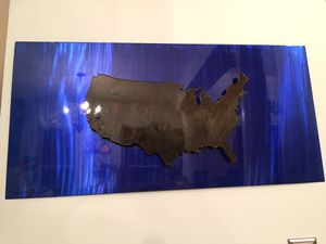 United States Metal Wall Art Hand Cut Clear Coated for Sale in Bridgeville, DE