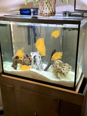40 gallons aquarium and stand for Sale in Dallas, TX
