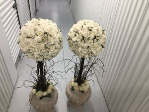 Artificial plant for Sale in Tampa, FL