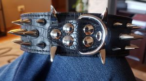 Leather Spike dog collar bully for Sale in Chicago, IL