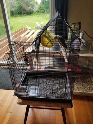 Cockatiel cage used for a week for Sale in Tacoma, WA