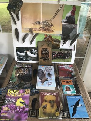 FREE! BIRD BOOKS, OWL ART and more. FREE!! for Sale in Orange, CA