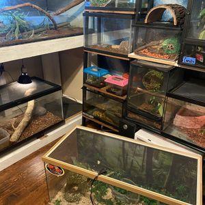 Reptile tanks for Sale in Ontario, CA