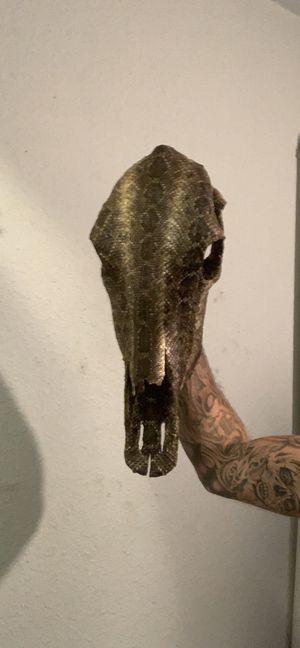 Real cow skull/western diamond back rattlesnake for Sale in Clyde, TX