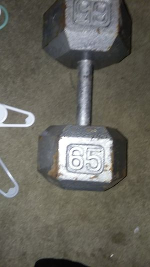 Weight 65lbs for Sale in Shakopee, MN