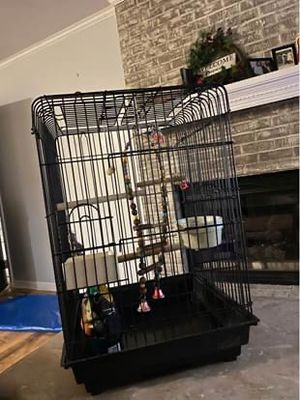 Bird cage for Sale in Goldsboro, NC