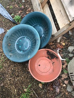 Plant pots for Sale in Maple Valley, WA