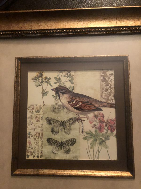 Framed matted bird picture