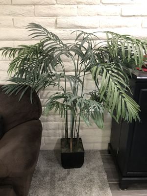 Fake plant for sale for Sale in Scottsdale, AZ