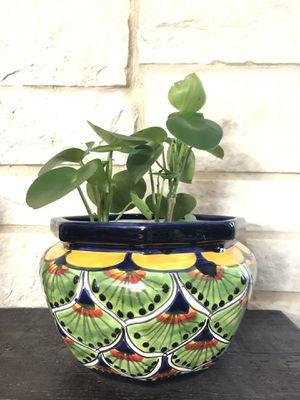 Talavera Planter with Plant for Sale in Cedar Hill, TX