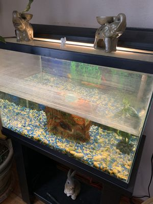 Small fish tank aquarium with stand, light and filter for Sale in Los Angeles, CA